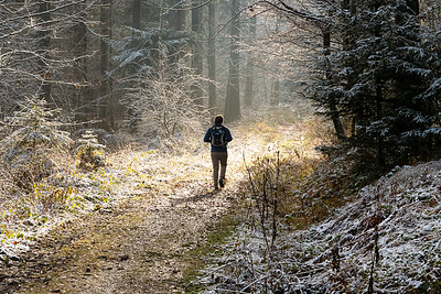 Andy in a patch of forest sunlight, the morning after a dusting of snow on Bachtel, just outside Wald, Switzerland.