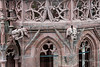 Detail of gargoyle rain spouts and stone work, George's Tower, Basel Munster, Old Basel, Switzerland