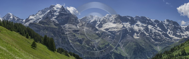 Almendhubel Muerren Eiger Moench Jungfrau Flower Snow Alps Sky Stock Pictures Summer Art Printing - 021415 - 15-06-2017 - 24047x7550 Pixel