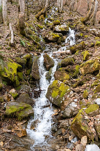 A cascading stream on the descent to Schwanden.