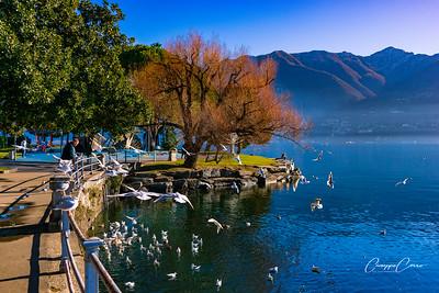 Locarno, Canton Ticino, Switzerland