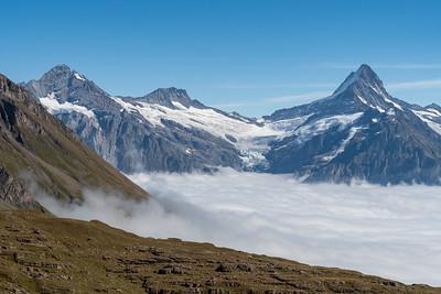 Wetterhorn, Berglistock, and Schreckhorn, and glaciers above Grindelwald, seen from Winteregg near Faulhorn.