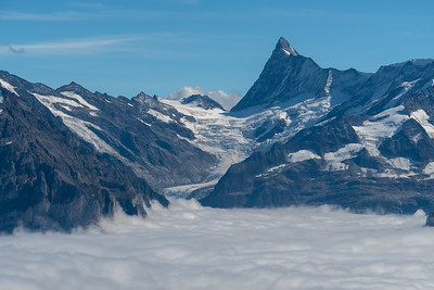 Finsteraarhorn and glaciers above Grindelwald, seen from Winteregg near Faulhorn.