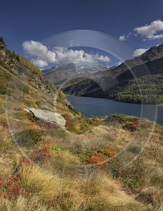 Maloja Sils Silsersee Engadin Lake Autumn Color Panorama Sunshine Mountain Sky City Prints - 025353 - 09-10-2018 - 7573x9863 Pixel