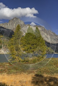 Maloja Sils Silsersee Engadin Lake Autumn Color Panorama Beach Stock Pictures Island Cloud - 025355 - 09-10-2018 - 7780x11470 Pixel