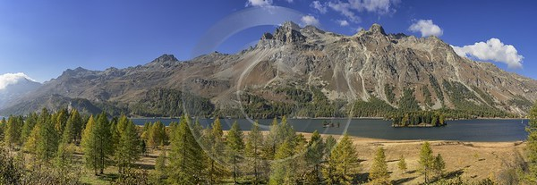 Sils Segl Engadin Silsersee Lake Autumn Color Panorama Fine Art Photography Gallery Fine Art - 025362 - 09-10-2018 - 22547x7785 Pixel