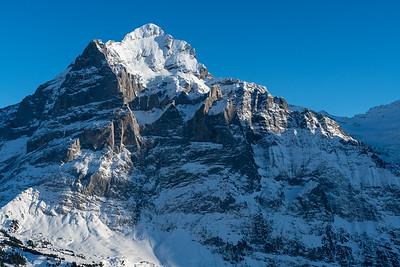 Wetterhorn seen from First... above Grindelwald.