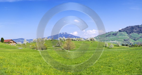 Udligenswil Golfplatz Fine Art Printer Shore Fine Art Photographers Summer - 000980 - 16-04-2007 - 7858x4146 Pixel