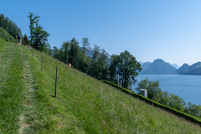 Andy begins the hike to Pilatus, past farms overlooking Alpnacher See.