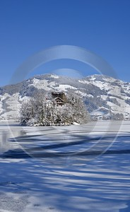 Lauerz Lauerzersee Eis Mythen Insel Schwanau Winter Landschaft Art Prints Ice Modern Wall Art Photo - 013090 - 10-02-2013 - 7117x11612 Pixel