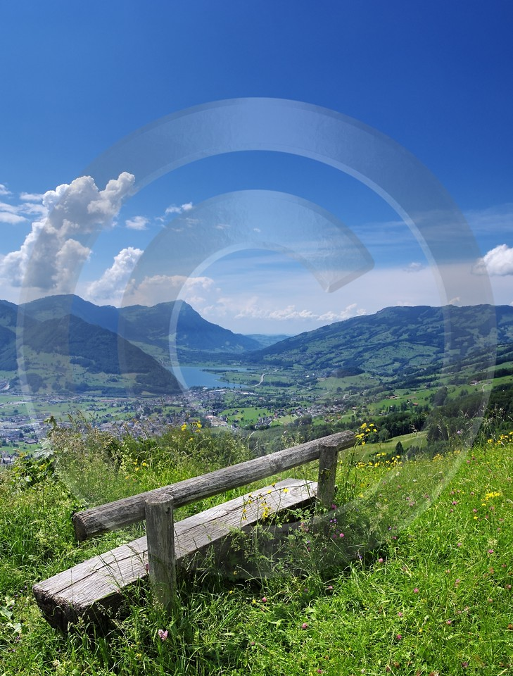 Huserenberg Lauerz Lauerzersee Bank Rigi Wolken Flower Fine Art Photography For Sale - 003104 - 10-06-2008 - 4203x5531 Pixel