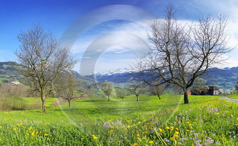 Steinerberg Landscape Photography Royalty Free Stock Photos Famous Fine Art Photographers Creek - 000895 - 13-04-2007 - 6615x4071 Pixel