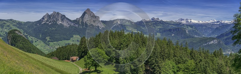 Urmiberg Grosser Kleiner Mythen Fronalp Flower Alps Panoramic Fog Fine Art Photography Galleries - 021706 - 08-06-2017 - 25262x7783 Pixel