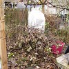 """Pergola, post vine hacking. There were a lot of dead limbs, so we ended up taking almost everything down and I'll """"start from the beginning"""" in the spring."""
