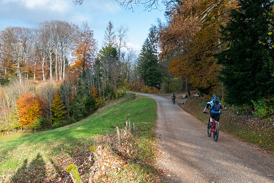 Bicyclists enjoy the Uetliberg-Felsenegg pathway, Zurich.