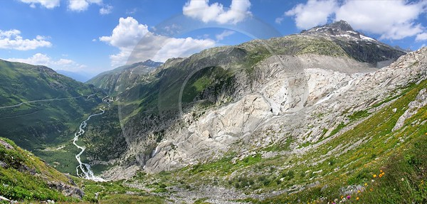 Grimsel Gletsch Furka Animal Fine Art Photography Grass City Landscape Photography - 001919 - 18-07-2007 - 9451x4529 Pixel