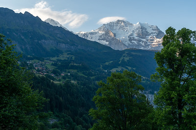 Morning view of Mönch and Jungfrau peaks from Mönchblick viewpoint, Wengwald.