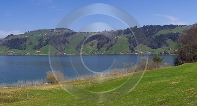 Aegerisee Fruehling See Ufer Schilf Horizontal Panorama Country Road Senic City Town - 004687 - 13-04-2009 - 7660x4160 Pixel