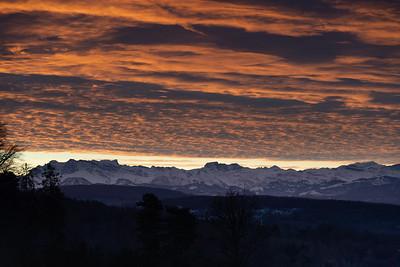 Zurichberg sunrise - December
