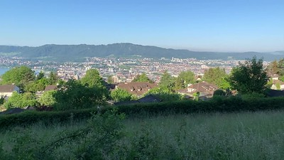 Morning on Zurichberg, with beautiful view.