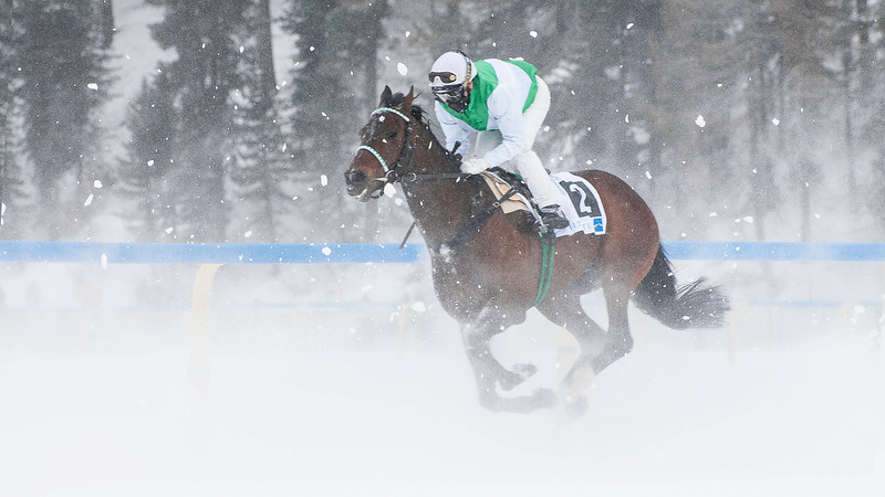 White Turf; Horse Races on Snow; Sankt Moritz; Engadin; Switzerland