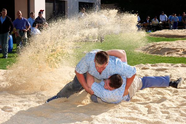Swiss wrestling ('Lutte' in French, 'Schwingen' in German)
