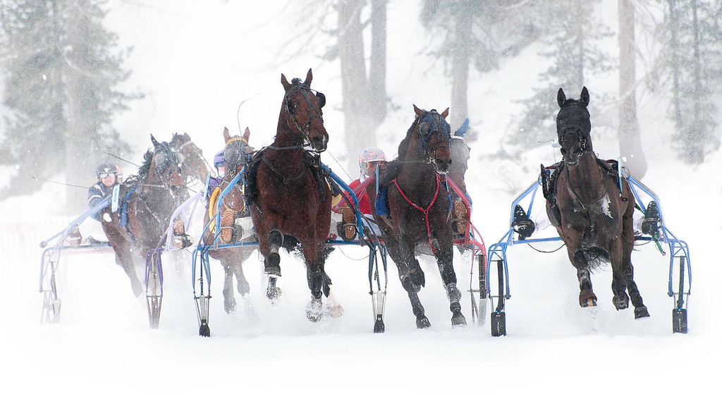 White Turf; Horse Races on Snow; Sankt Moritz; Graubünden; Switzerland