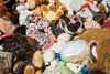 Sycuan Rady Childrens 2014-275