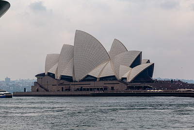 Sydney Opera House with detailed roof pattern, Sydney New South Wales Australia.