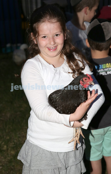 Pizza In The Hut Succot Party at Barracluff Park in Bondi. Bracha Amzalak holds a chicken in the mini petting farm.