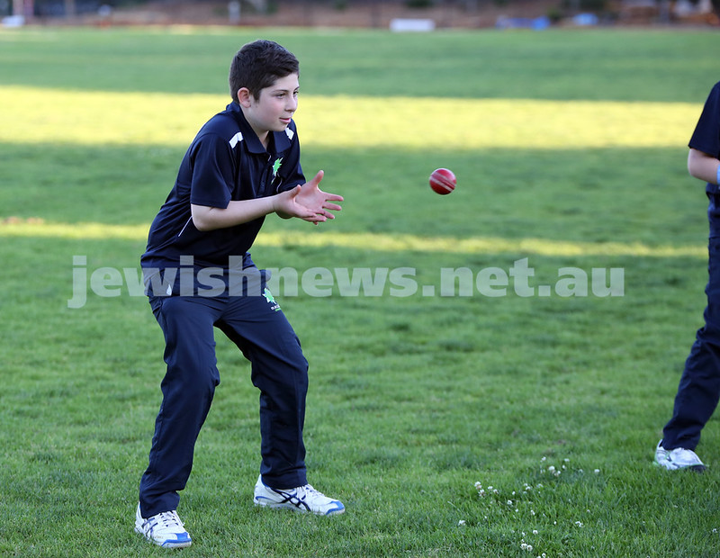 Maccabi Junior Cricket training at Rose Bay. Josh Segal about to catch the ball during fielding practice.