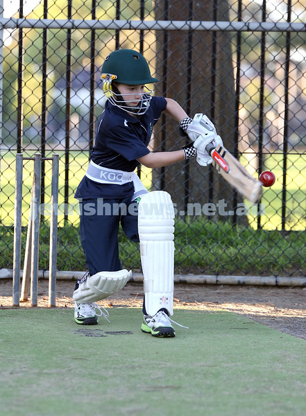 Maccabi Junior Cricket training at Rose Bay. Jake Ziman takes a swing during training in the nets.