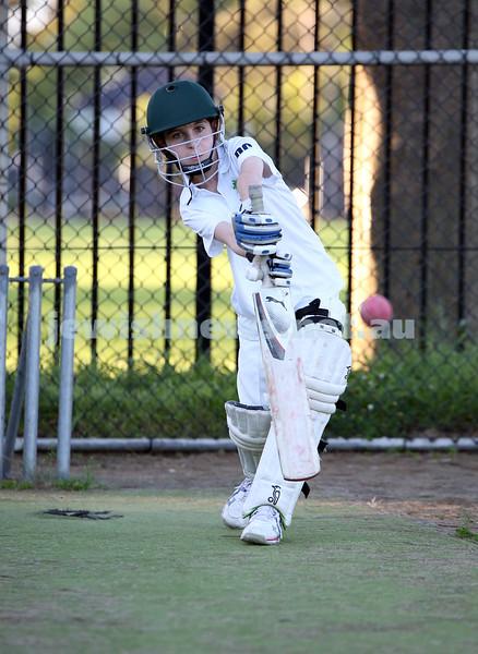 Maccabi Junior Cricket training at Rose Bay.