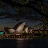 View of Sydney Opera House from Royal Botanic Gardens.