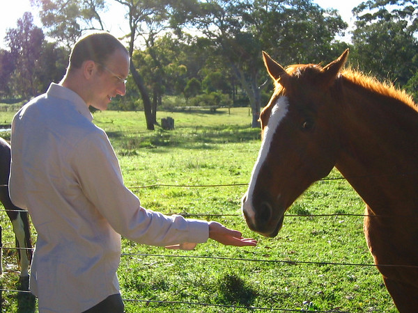 Taking the scenic route to Hunter Valley, we stopped and played with the horses. Look at this guy's maniacal eye. Seconds after this shot he was leaping in the air and started trying to kick me through the fence. That's why they call me Dolittle Sarich...