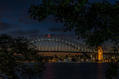 View of Sydney Harbour Bridge from Royal Botanic Gardens.