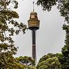 Westfield Tower.