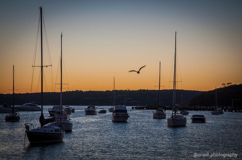 Balmoral Sunrise