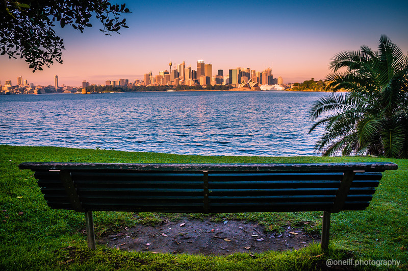Park Bench View