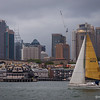 Stormy Harbour Sailing