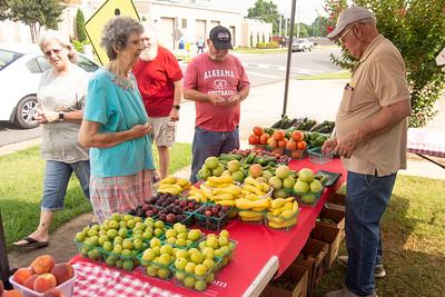 0611 - sylacauga farmers market 009 tw