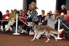 This photo was take by our friend, Tom Kasowski.<br /> Fiona during Best of Breed competition at the 2006 National Specialty in Olympia, Washington. Fiona was awarded Winners Bitch, Best Bred By Exhibitor, and an Award of Merit by judge Espen Engh of Norway.