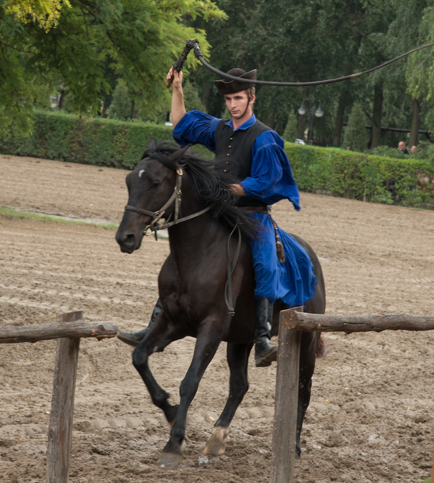 Horse Show-Budapest country