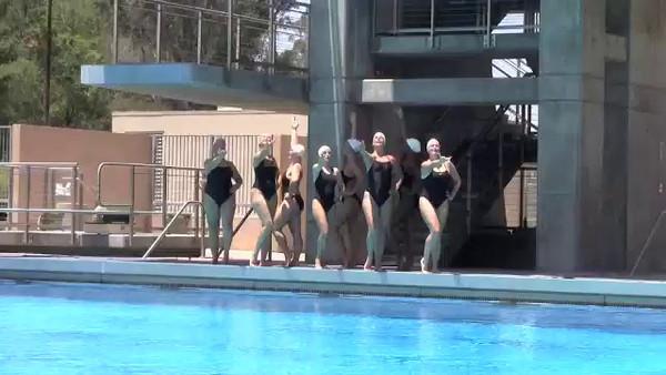 2014 Synchro Video