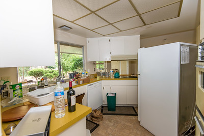 DSC_19_kitchen