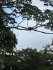 200907 Costa Rica32