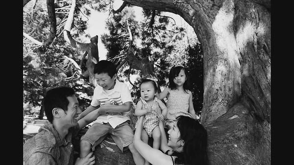 Family Portrait Slideshow