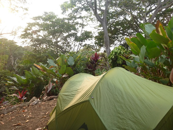 Tenting in the jungle