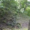 Unexcavated Mound