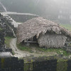 Thatched roof protects fragile excavations